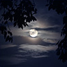 The full moon blog